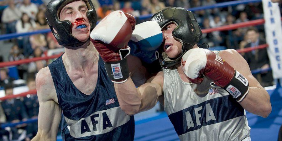 Stitnici u boksu